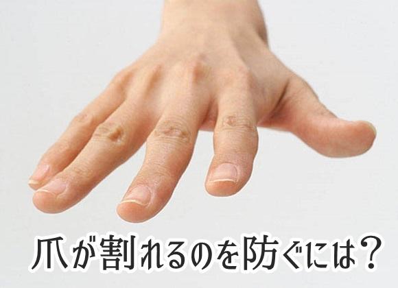 爪が割れるのを防ぐには?