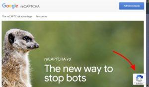 GoogleRecaptcha